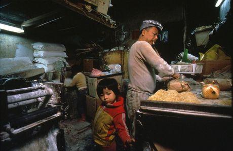 'Khu o chuot' o Hong Kong mot thoi qua anh - Anh 10