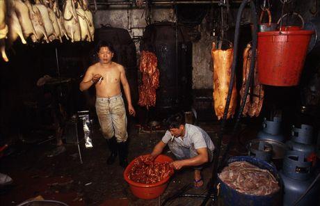 'Khu o chuot' o Hong Kong mot thoi qua anh - Anh 12