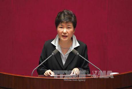 Phan ung ve bai phat bieu cua Tong thong Park Geun-hye - Anh 1