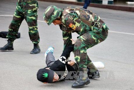 Dien tap chong khung bo tai cua khau Viet-Trung - Anh 2