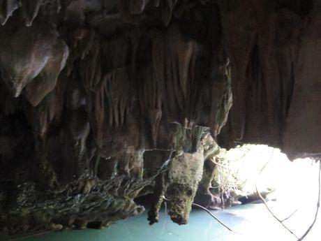 Nhu da hang dong tren Vinh Ha Long bi 'chay mau' nghiem trong - Anh 7