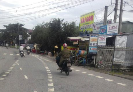 Thanh nien 'ngao da'… lay dao tu sat - Anh 1