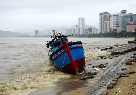 Lu ve, bo bien Nha Trang day cui rac nhu bai hoang - Anh 7