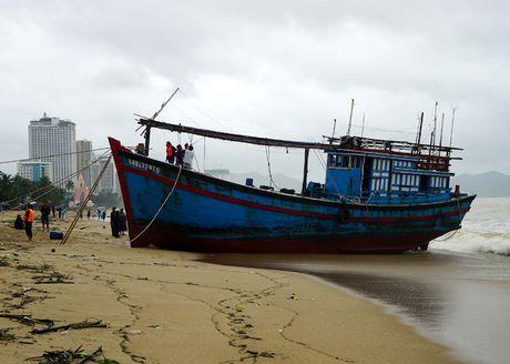 Lu ve, bo bien Nha Trang day cui rac nhu bai hoang - Anh 8
