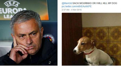 Fan M.U doa giet cho neu khong sa thai Mourinho, keu goi dua Sir Alex tro lai - Anh 1