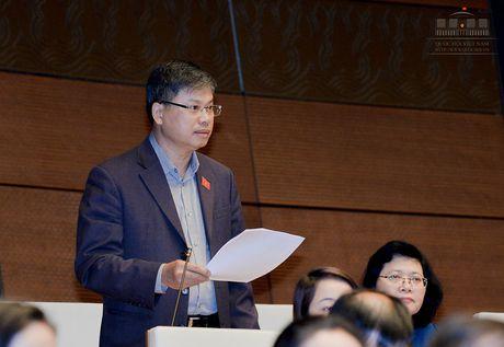 Dai bieu Nguyen Sy Cuong: Co tinh 'sa lay' vi no ca nghin ty khi xay dung nong thon moi - Anh 1