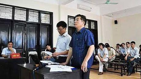 Diem moi o toa hanh chinh: Duong su duoc hoi va tranh tung khong khac gi luat su - Anh 1