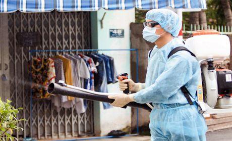 Zika gia tang o Ho Chi Minh, nguoi dan dung qua lo so - Anh 3