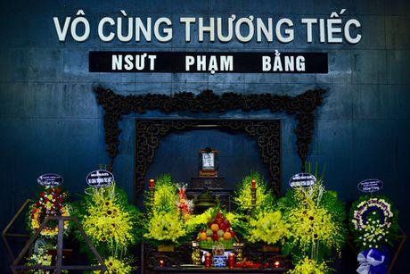 Gia dinh, dong nghiep nghen ngao o dam tang NSUT Pham Bang - Anh 1