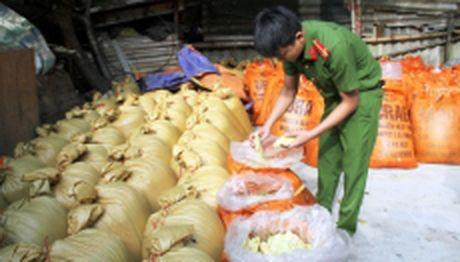 Lao Cai: Bat giu 10 tan mang tuoi ngam hoa chat doc hai - Anh 1