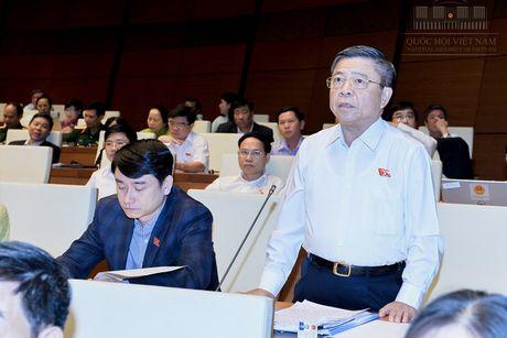 Ong Vo Kim Cu: Ai cung ho nhung lam chua bai ban - Anh 1