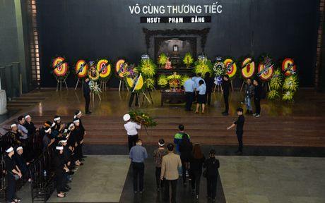 Cac nghe sy Viet nghen ngao truoc linh cuu NSUT Pham Bang - Anh 1