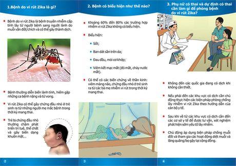 Du phong de giam nguy co tre mac chung dau nho do virus Zika - Anh 1