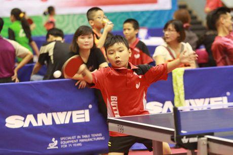 Hanoi Open 2016: Cac 'dan anh' nhuong san khau cac 'dan em' - Anh 5