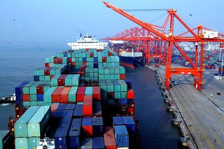 Van chuyen container bang duong bien phai niem yet gia - Anh 1