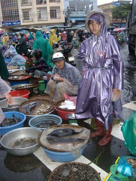 Phu Yen: Cho lon chay lu, cac mat hang thiet yeu tang gia - Anh 8