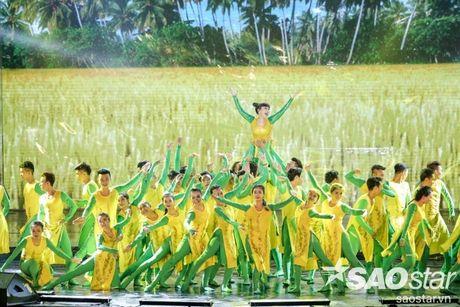 Liveshow 20 nam cua Viet Huong: Khan gia va nghe si khoc, cuoi cung tieng mua - Anh 6