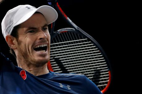 Andy Murray lan dau len ngoi so 1 the gioi - Anh 1