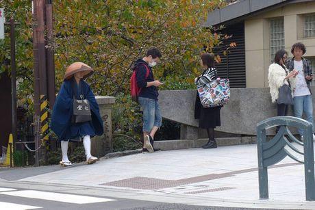 Dap xe vong quanh Kyoto trong mua thu la vang la do dep me hon - Anh 3