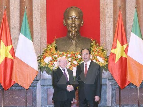 Chu tich nuoc Tran Dai Quang chieu dai chao mung Tong thong Ireland - Anh 1