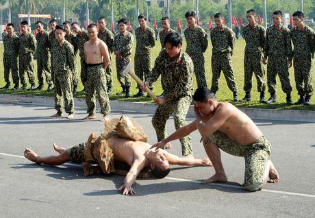 Than phuc dang cap khi cong, nganh cong cua dac cong Viet Nam - Anh 4