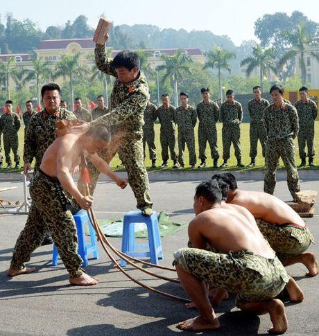 Than phuc dang cap khi cong, nganh cong cua dac cong Viet Nam - Anh 6