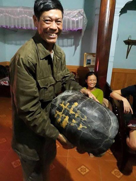 Bat duoc rua 'la' 16kg trong vuon khi di hai rau - Anh 1