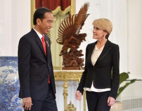 Indonesia tang cuong phong thu o Bien Dong, thu hut cac nha cung ung vu khi - Anh 2