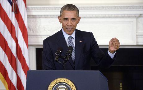 'Hoang hon nhiem ky' cua ong Obama - Anh 1