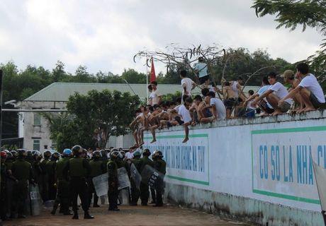 Bo truong hop khan vu hang tram nguoi cai nghien tron trai - Anh 2