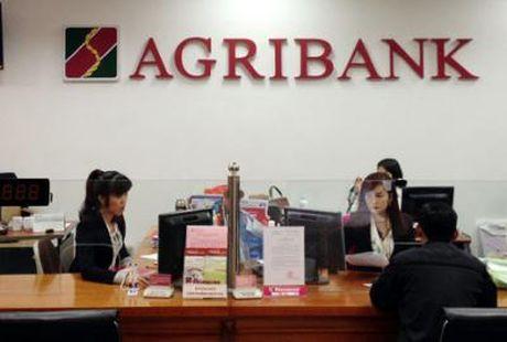 Agribank uu dai lai suat dip Tet Nguyen dan 2017 - Anh 1