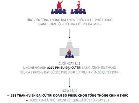 Hieu the thuc bau tong thong My trong 1 phut - Anh 3