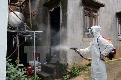 Binh Duong cong bo dich Zika cap xa, phuong - Anh 1