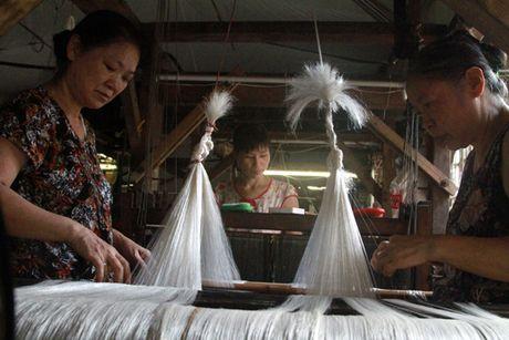 Thoi co phat trien lua Van Phuc - Bai 2 - Anh 2