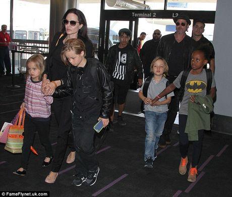 Brad Pitt that bai, Angelina Jolie tiep tuc duoc quyen nuoi con - Anh 2
