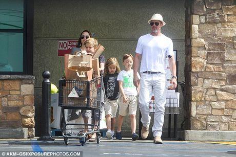 Brad Pitt that bai, Angelina Jolie tiep tuc duoc quyen nuoi con - Anh 3