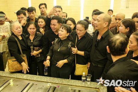 Vinh biet 'cay dai thu' cua lang cai luong Ut Bach Lan! - Anh 46