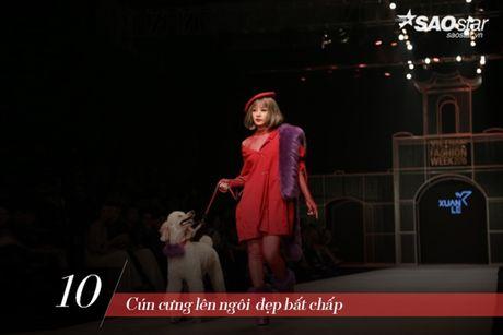 Ca VIFW Thu Dong 2016 'bong choc thu be lai vua bang' 12 dieu nay - Anh 10