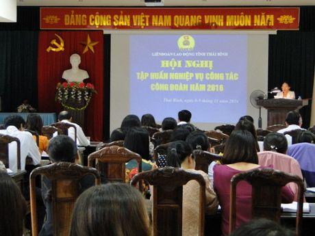 LDLD tinh Thai Binh: Tap huan nghiep vu cong tac Cong doan nam 2016 - Anh 1