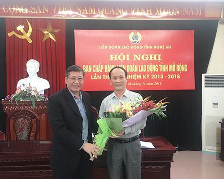 Dong chi Nguyen Tu Phuong la Chu tich LDLD tinh Nghe An - Anh 1