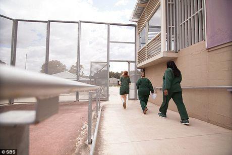 Bao luc, ma tuy trong trai giam nu lon nhat Australia - Anh 4