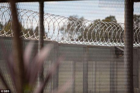 Bao luc, ma tuy trong trai giam nu lon nhat Australia - Anh 5