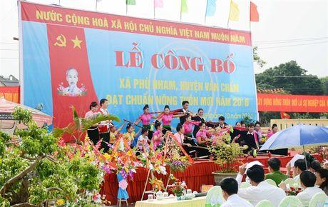 Phu Nham xay dung NTM tu doi chan nong nghiep - Anh 4