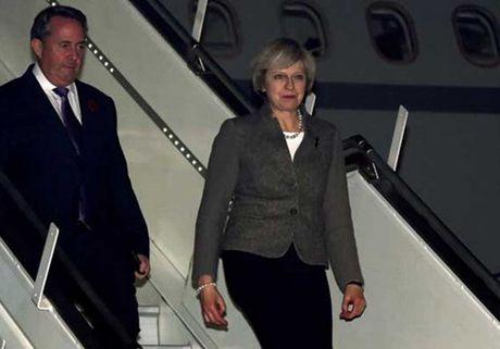 Thu tuong Anh tham An Do: Tim kiem co hoi kinh te hau Brexit - Anh 1