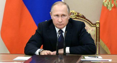 Tong thong Nga Putin gui dien rieng chuc mung ong Trump dac cu - Anh 1