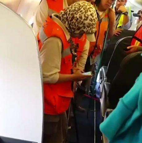 Mexico: Het hon voi ran doc treo 'lung lang' trong may bay - Anh 2
