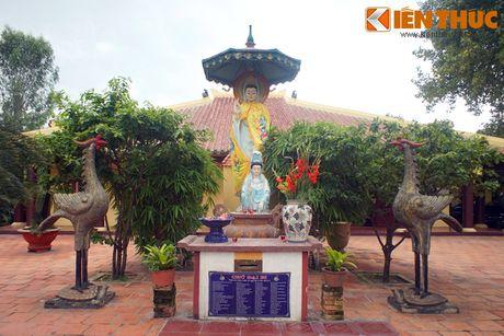 Kham pha ngoi co tu lung danh dat Sai Gon xua - Anh 5