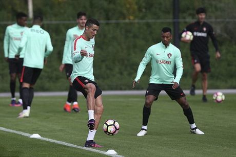Nike ky hop dong tai tro tron doi 1 ti bang voi Ronaldo - Anh 2