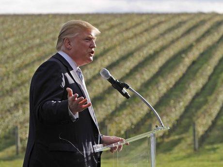 Nhin lai khoi tai san khong lo gay 'choang' cua ong Donald Trump - Anh 10