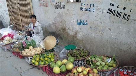 10 thang Viet Nam nhap khau 120 nghin tan trai cay tu Trung Quoc - Anh 1